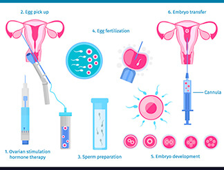 In Vitro Fertilization (IVF): Get Infertility Treatment from Dr.Jasmine Kaur Dahyia-IVF, Infertility & Test Tube Baby Specialist